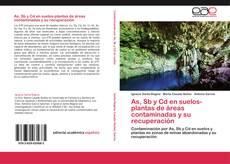 Buchcover von As, Sb y Cd en suelos-plantas de áreas contaminadas y su recuperación