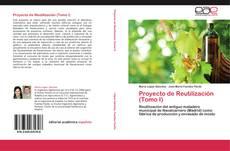 Proyecto de Reutilización (Tomo I)的封面