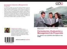 Bookcover of Formulación, Evaluación y Management de Proyectos