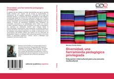 Copertina di Diversidad, una herramienta pedagógica privilegiada