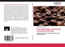 Copertina di Fenomenología, formación y mundo de la vida