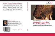 Borítókép a  Garantías, principios y reglas del proceso civil - hoz
