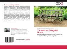 Bookcover of Turismo en Patagonia Norte