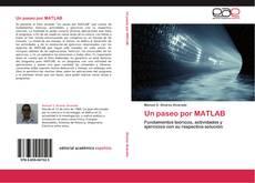 Un paseo por MATLAB kitap kapağı