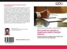 Encuesta de opinión a empresas sobre Control Interno kitap kapağı