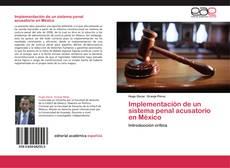 Borítókép a  Implementación de un sistema penal acusatorio en México - hoz