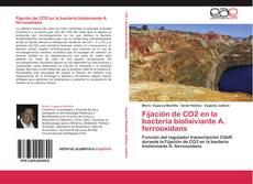 Fijación de CO2 en la bacteria biolixiviante A. ferrooxidans kitap kapağı