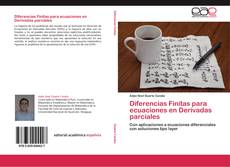 Copertina di Diferencias Finitas para ecuaciones en Derivadas parciales