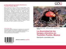Portada del libro de La diversidad de los hongos silvestres en Teziutlán Puebla, Mexico