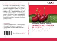 Capa do livro de Deshidratación convectiva de alimentos
