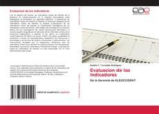 Bookcover of Evaluacion de los Indicadores