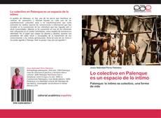 Portada del libro de Lo colectivo en Palenque es un espacio de lo íntimo