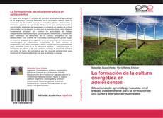Bookcover of La formación de la cultura energética en adolescentes
