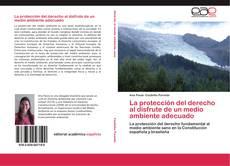 Buchcover von La protección del derecho al disfrute de un medio ambiente adecuado