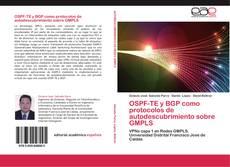 OSPF-TE y BGP como protocolos de autodescubrimiento sobre GMPLS的封面
