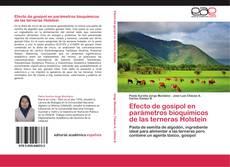 Copertina di Efecto de gosipol en parámetros bioquímicos de las terneras Holstein