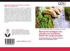 Remoción biológica de nitratos en reactores Batch de carga pesada的封面