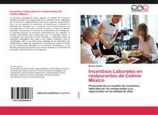 Portada del libro de Incentivos Laborales en restaurantes de Colima México