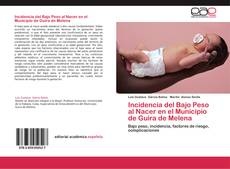 Incidencia del Bajo Peso al Nacer en el Municipio de Guira de Melena的封面
