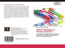 Saber Pedagógico y Práctica Docente的封面