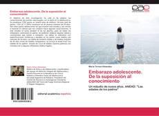 Bookcover of Embarazo adolescente. De la suposición al conocimiento