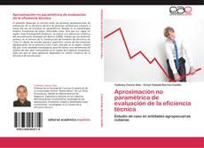 Bookcover of Aproximación no paramétrica de evaluación de la eficiencia técnica