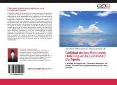 Copertina di Calidad de los Recursos Hídricos en la Localidad de Apolo