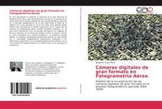 Bookcover of Cámaras digitales de gran formato en Fotogrametría Aérea