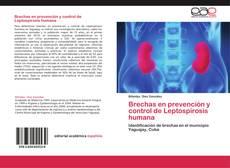 Buchcover von Brechas en prevención y control de Leptospirosis humana