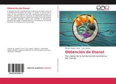 Обложка Obtención de Etanol