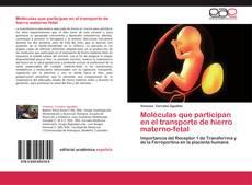 Moléculas que participan en el transporte de hierro materno-fetal的封面