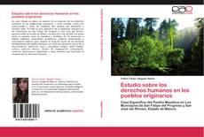 Estudio sobre los derechos humanos en los pueblos originarios