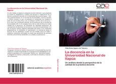 La docencia en la Universidad Nacional de Itapúa kitap kapağı