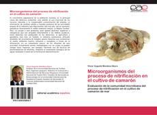 Обложка Microorganismos del proceso de nitrificación en el cultivo de camarón
