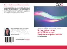 Обложка Sobre estructuras geométricas para modelos q-exponenciales