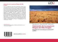 Buchcover von Valoración de la sequía en Riegos del Alto Aragón