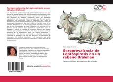 Bookcover of Seroprevalencia de Leptospirosis en un rebaño Brahman