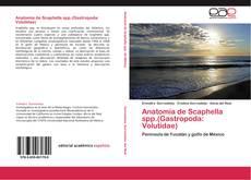 Bookcover of Anatomía de Scaphella spp.(Gastropoda: Volutidae)