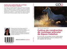 Bookcover of Cultivo de condrocitos de cartílago articular de Equus caballus