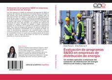 Bookcover of Evaluación de programas S&SO en empresas de distribución de energía