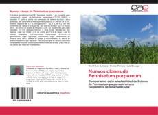 Bookcover of Nuevos clones de Pennisetum purpureum