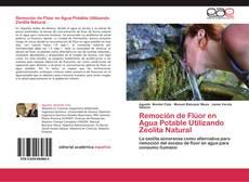 Borítókép a  Remoción de Flúor en Agua Potable Utilizando Zeolita Natural - hoz