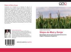 Copertina di Silajes de Maíz y Sorgo
