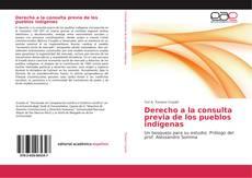 Bookcover of Derecho a la consulta previa de los pueblos indígenas