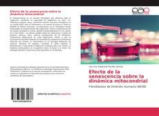 Bookcover of Efecto de la senescencia sobre la dinámica mitocondrial