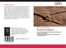 Pueblos Indígenas的封面