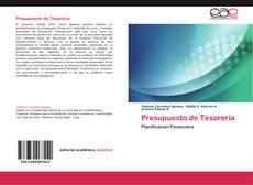 Buchcover von Presupuesto de Tesorería
