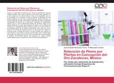 Buchcover von Retención de Plomo por Plantas en Concepción del Oro Zacatecas, México