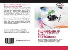 Portada del libro de Biorremediación de Cr(VI) y lindano en suelos por actinobacterias
