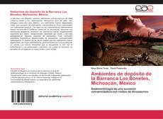 Portada del libro de Ambientes de depósito de la Barranca Los Bonetes, Michoacán, México
